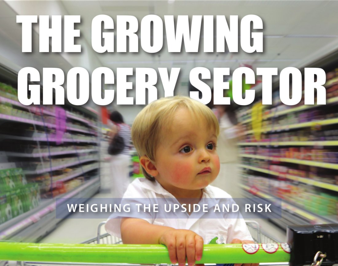 the-growing-grocery-sector