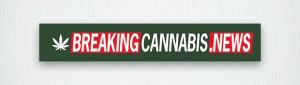 Breaking Cannabis News